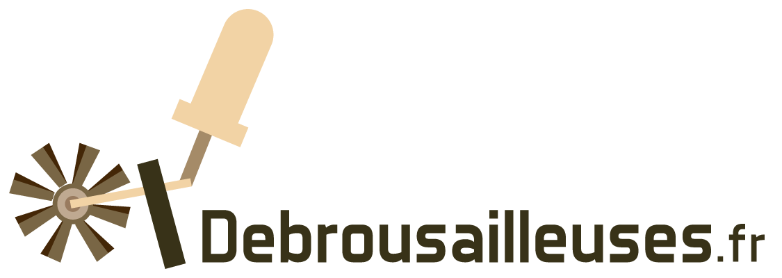 debrousailleuses.fr